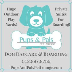 Dog Daycare-3