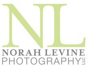 nlevinephotologo